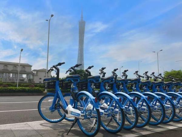 广州已经投标一年多了 哈尔滨自行车配额已达到最高