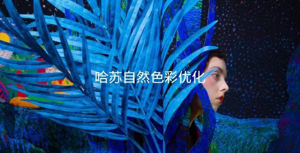 3799元起 一加9系列发布:顶级高刷屏+哈苏影像