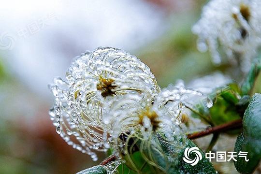 贵州多地今天仍有冻雨 气温低迷注意防寒保暖