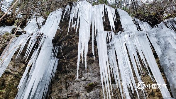 """贵州道真洛龙磨盘山现""""冰瀑""""冬日特色景观"""