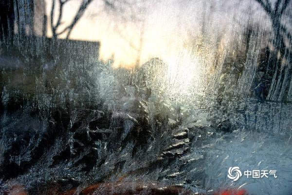 冬天的浪漫 唯美冰窗花悄然绽放