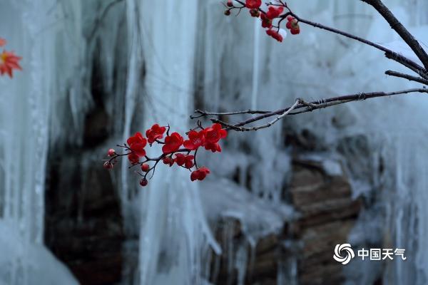 河南九峰山现冰瀑美景 吸引游客前来观赏