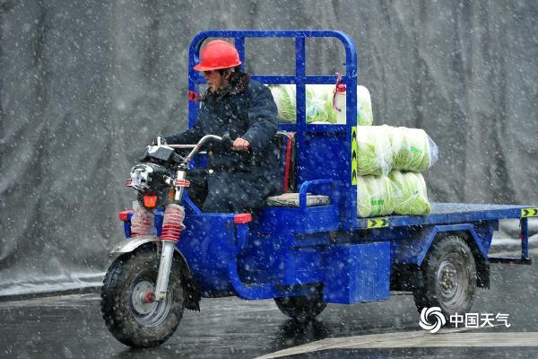 浙江金华漫天飞雪 农产品市场一派繁忙保供应