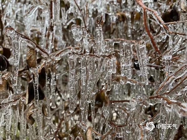 白雪皑皑!寒潮过境 江西多地高山白雪美如仙境