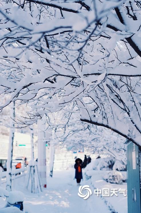 """暴雪侵袭!山东烟台雪后景象犹如""""冰河世纪"""""""
