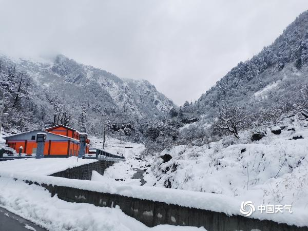 白雪点缀云南高黎贡山 如梦似幻
