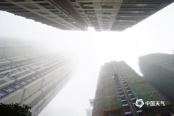 """雾""""锁城"""" 广西钦州最低能见度不到50米"""