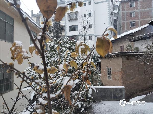 银装素裹 云南大关出现低温雨雪天气