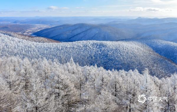 美极了!内蒙古牙克石兴安岭现雾凇景观