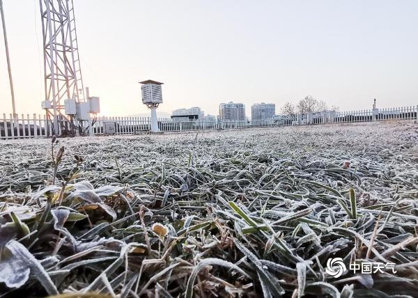 贵州多地出现2021年初霜 晶莹剔透美如画