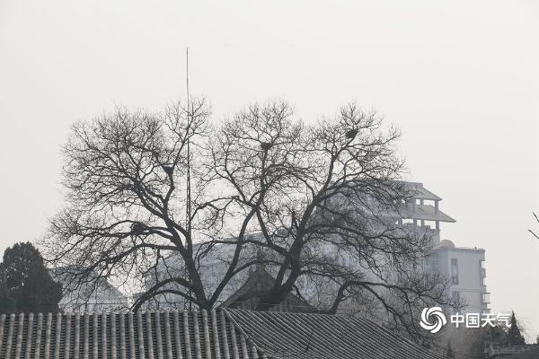 北京空气重污染黄色预警生效中 天空灰蒙蒙