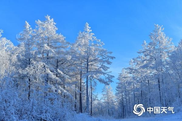 南方气温短暂上升 新一轮寒潮天气来袭