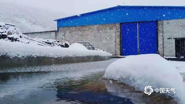 云南红河文山出现降雪 一片银装素裹