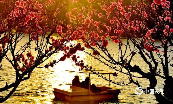 最惊艳的春天 都藏在这些浓浓中国风的图里了