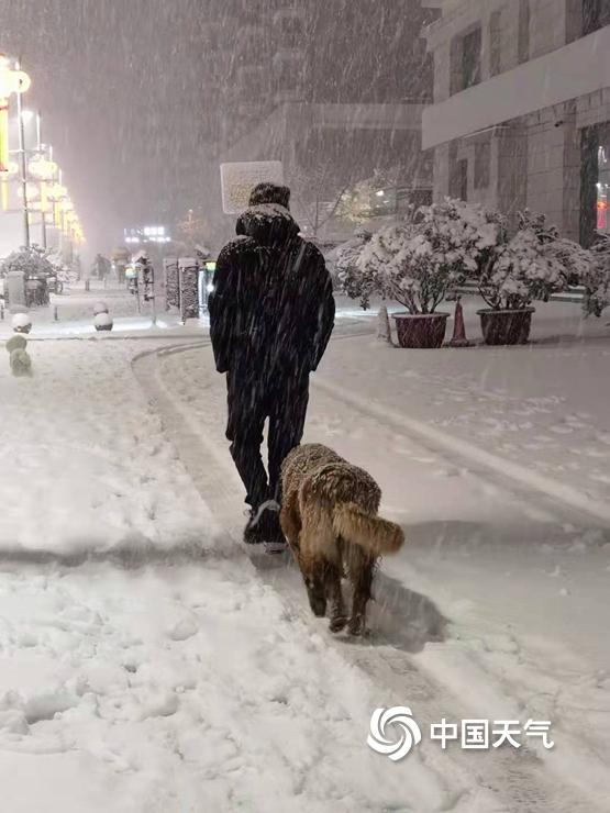 河南多地迎牛年以来最强降雪 天地间一片白茫茫