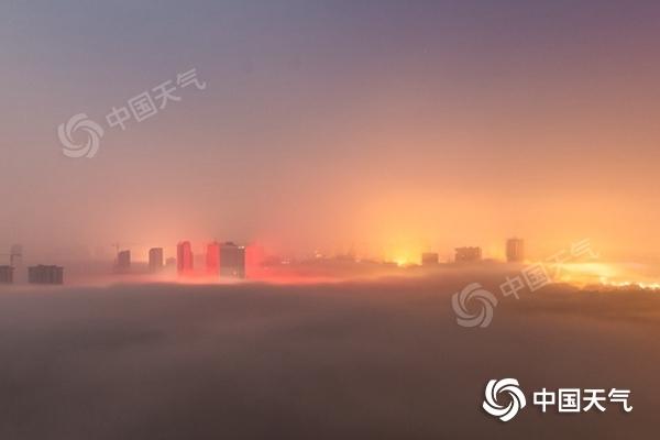 春天的大复苏开启了痰在华北等地的发展
