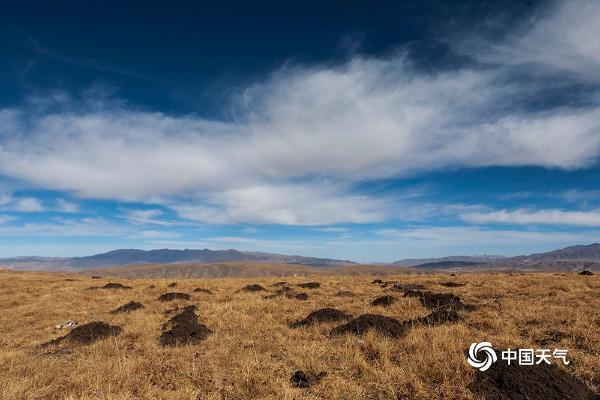 青海蓝天迎立春 龙羊峡库区尽显壮丽风景