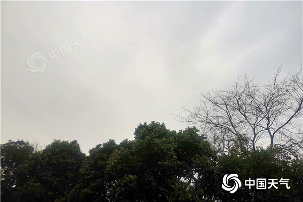 下雨啦!今后三天云南南部地区有强降雨