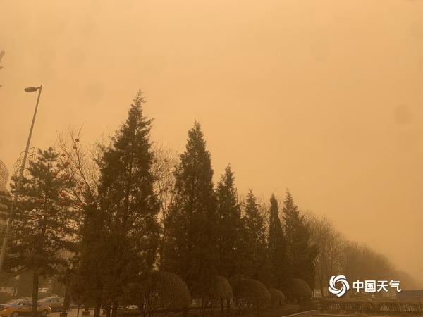 现场直击北方今年首场大范围沙尘天气 天空昏黄土腥味浓