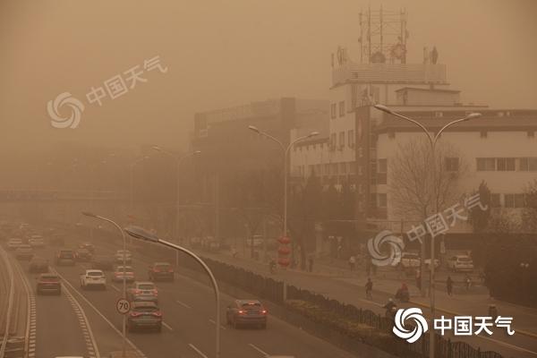 专家解读:这么强的沙尘暴防护林能挡住吗?