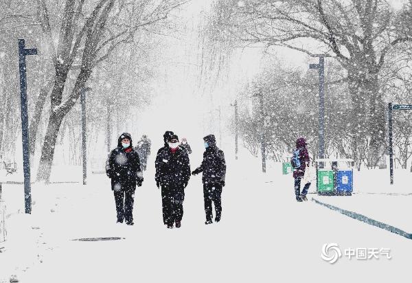 大雪!哈尔滨天地一体 市民雪行