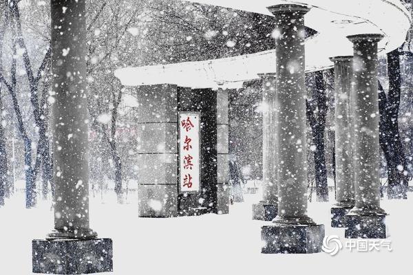 大雪纷飞!哈尔滨天地浑然一体 市民冒雪出行