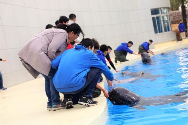 海昌海洋公园第七届孤独症家庭关爱月全国开启