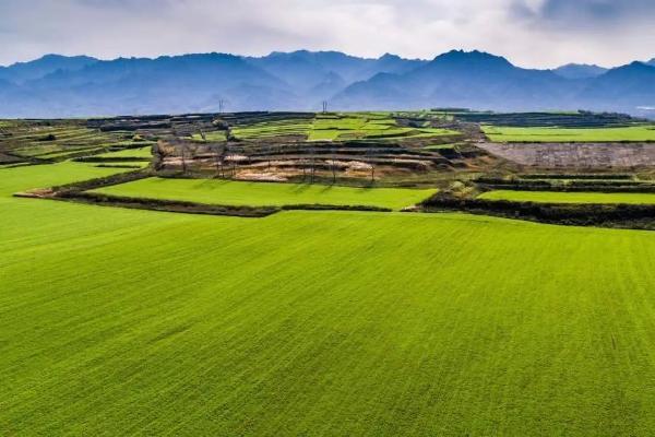 享受乡村 感受乡村的温柔 Xi安开始乡村旅游年