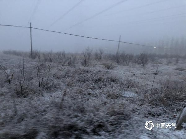 北京雨雪仍在持续!延庆等地已现积雪