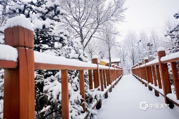 青海南部出现降雪 到处银装素裹仿若童话世界
