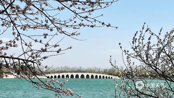 桃花含笑映湖面 颐和园又迎一年赏春时