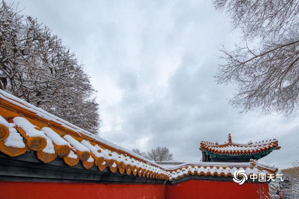 哈尔滨迎降雪 文庙在白雪的映衬下愈显古朴典雅