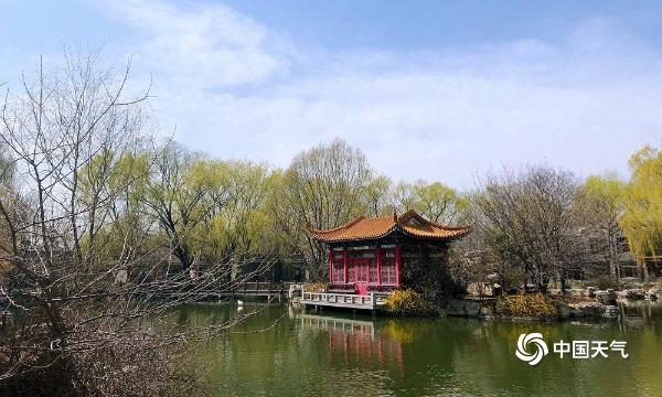 北京北武公园现在是下午的蓝天 春天的风景很美