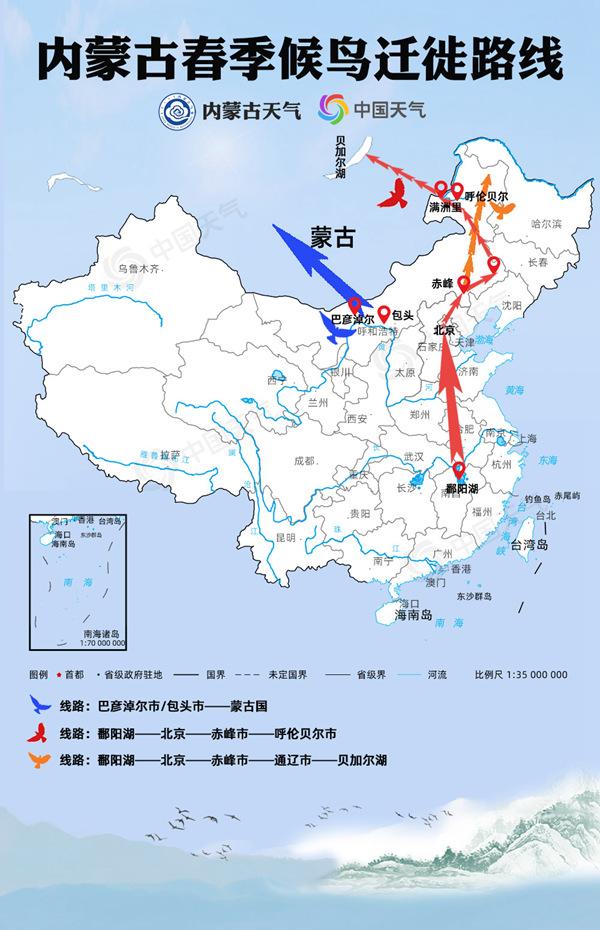内蒙古候鸟迁徙地图来了!一文告诉你哪里是春季候鸟最佳观赏地