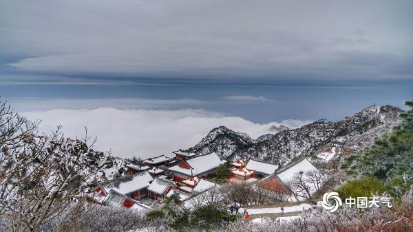绝美!雪后泰山雾凇和云海交相辉映 宛如仙境