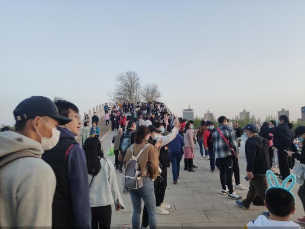 清明节期间 北京公园接待了164万游客赏花