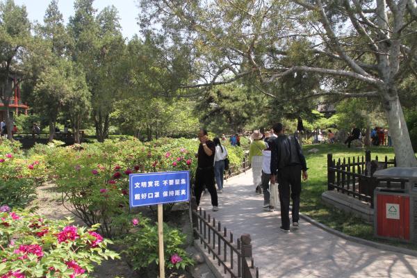山西太原启动2021年全市公园花事文化活动