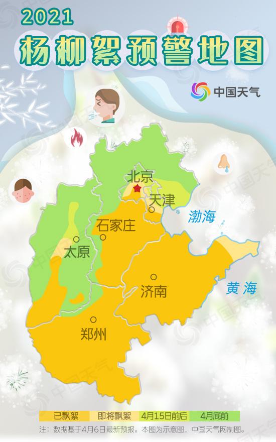 """小心糊一脸!华北杨柳絮即将进入高发期 北京城区已见""""雪"""""""