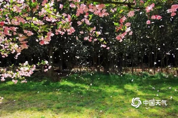 """正是一年春好处 来""""最氧人""""的余姚四明山尽享春色"""