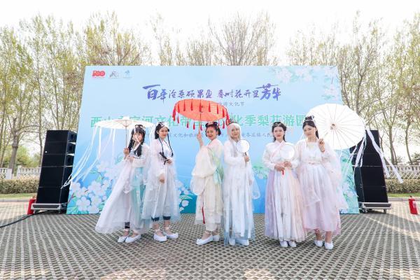 欣赏万亩梨花 感悟传统文化 北京大兴举办梨花园活动