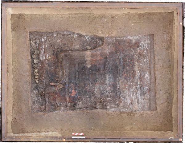 2020全国十大考古新发现之河南省洛阳市伊川县徐阳墓地