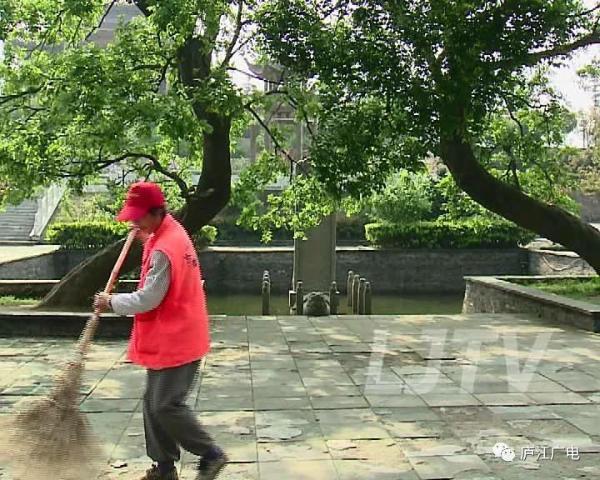 """安徽:古树保护有了""""树保姆"""""""
