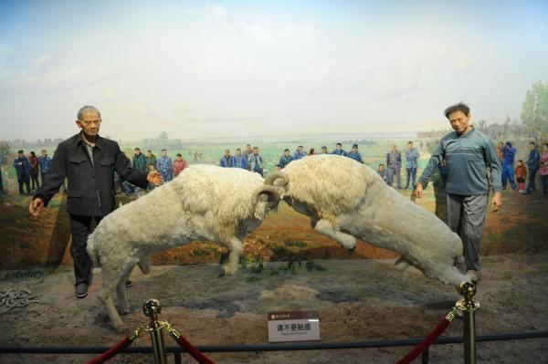 山东梁山:黄河文化在博物馆薪火相传