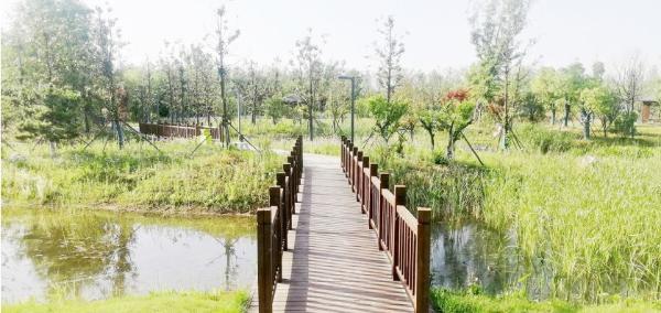 安徽阜阳国家农业公园基本建成