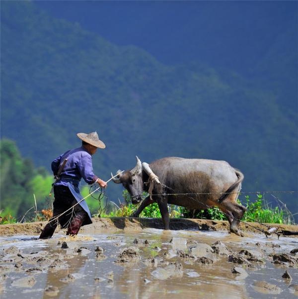 百城百艺 非遗名录   带你体验传承千年的农耕文化