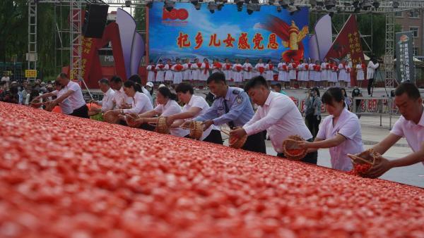 宁夏:六月中宁枸杞笑