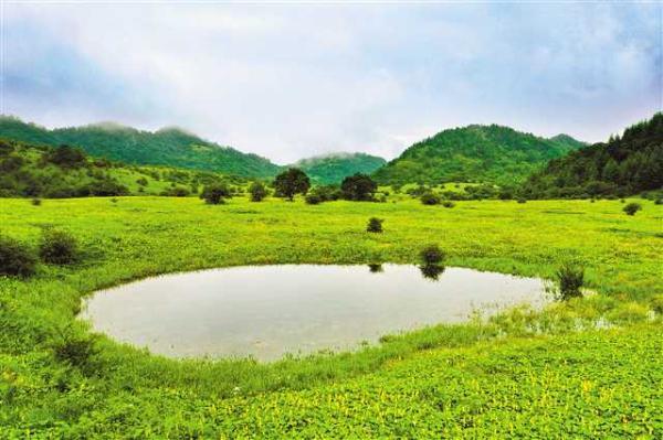 五里坡申遗成功 重庆第三个世界自然遗产地