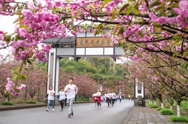 解放文化铸魂赋能 重庆南川文旅融合开新局