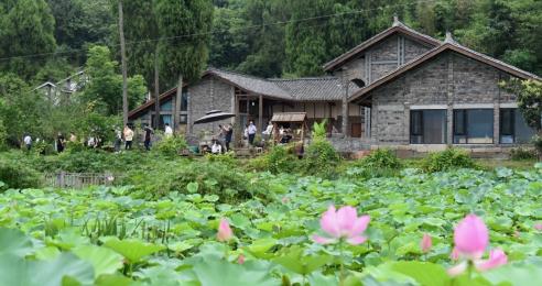 四川南充:着力推动旅游民宿高质量发展