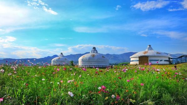 企业服务 | 内蒙古:组合拳助企业脱困 让草原文化活起来